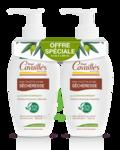 Acheter Rogé Cavaillès Hygiène intime Soin naturel Toilette Intime Sécheresse 2Fl/250ml à Fargues-  Saint Hilaire